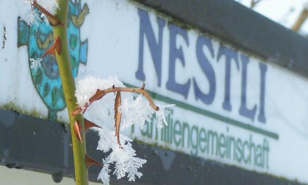 Nestli